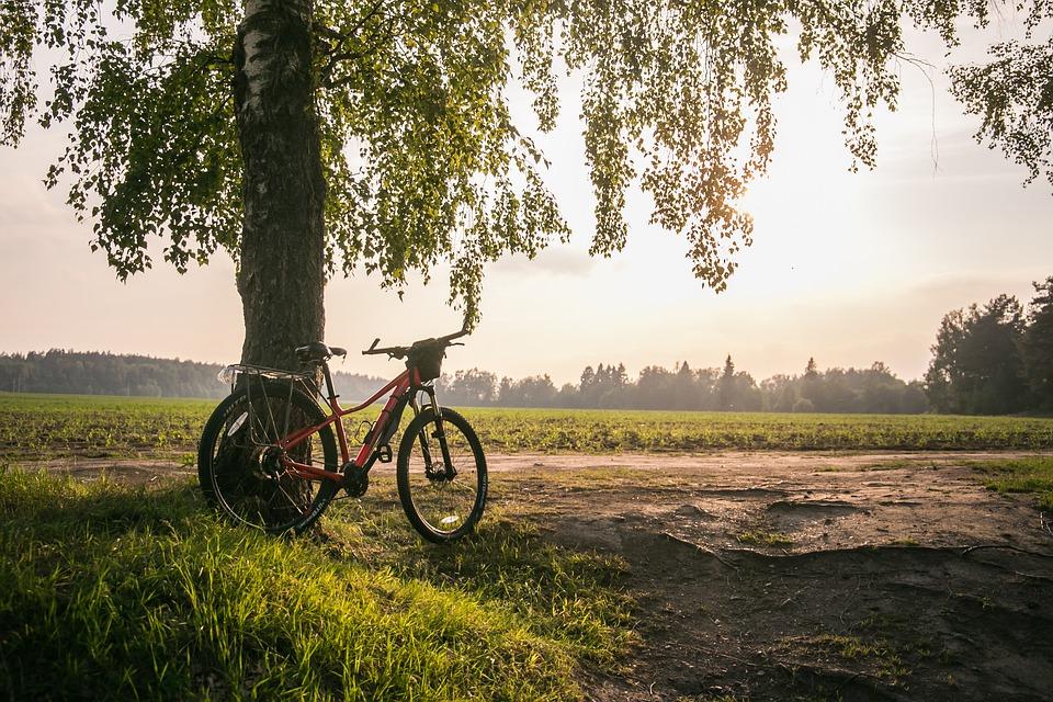 kolo na cestách